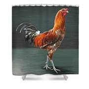 46.liege Game Shower Curtain