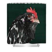 47. Bearded Hen Shower Curtain