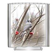 4817-003 - Fb Shower Curtain
