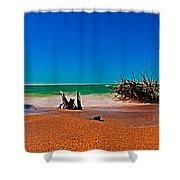 4x1 Florida Beach Panorama 732 Shower Curtain