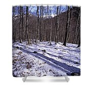 Abruzzo National Park Shower Curtain