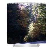Autumn 4 Shower Curtain