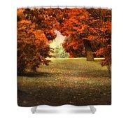 Autumn Ablaze Shower Curtain
