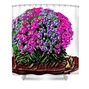 Beautiful Arrangement Of Flowers Shower Curtain