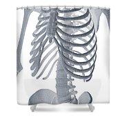 Bones Of The Torso Shower Curtain