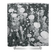 Bubbles In Ice On Abraham Lake Shower Curtain