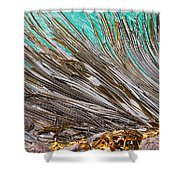 Bull Kelp Blades On Surface Background Texture Shower Curtain by Stephan Pietzko
