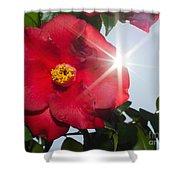 Camellia Flower Shower Curtain