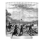 Cotton Plantation, 1867 Shower Curtain