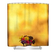 Daisies In A Vase On Shelf Shower Curtain