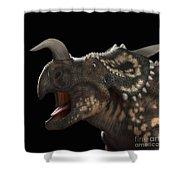 Dinosaur Einiosaurus Shower Curtain