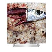 Fish Bait Shower Curtain