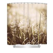 June Grass Flowering Shower Curtain