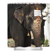Lakshmi Temple Elephant Shower Curtain