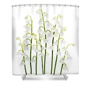 Lily-of-the-valley Flowers  Shower Curtain