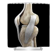 Right Knee Ligaments Shower Curtain