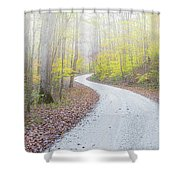 Road Passing Through A Forest Shower Curtain