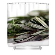 Rosemary Shower Curtain