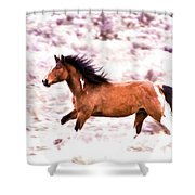 Chasing Freedom Shower Curtain