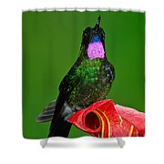 Tourmaline Sunangel Shower Curtain