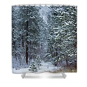 Winter In Pike National Forest Shower Curtain