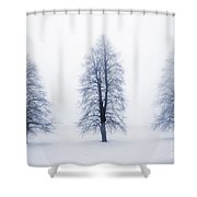 Winter Trees In Fog Shower Curtain