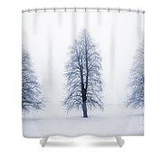 Winter Trees In Fog Shower Curtain by Elena Elisseeva