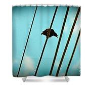 5 Wire 2 Shower Curtain