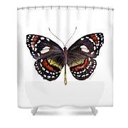 50 Elzunia Bonplandii Butterfly Shower Curtain