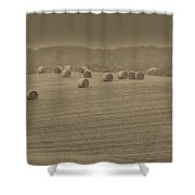 50 Shades Of Hay Shower Curtain