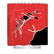 5040.16.10 Shower Curtain