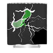 5040.16.29 Shower Curtain