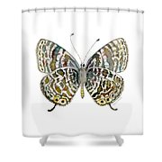 51 Lang's Short-tailed Blue Butterfly Shower Curtain