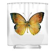 53 Leucippe Detanii Butterfly Shower Curtain