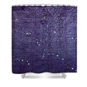 5x7.l.1.10 Shower Curtain