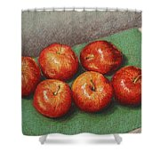 6 Apples Washed And Waiting Shower Curtain