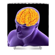 Conceptual Image Of Human Brain Shower Curtain