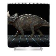 Dinosaur Diceratops Shower Curtain