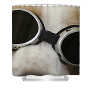 Dog With Sunglasses Shower Curtain