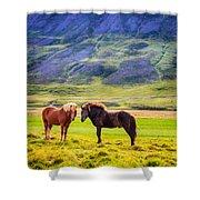 Icelandic Ponies Shower Curtain