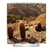 Indian Canyons Shower Curtain