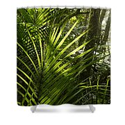 Jungle Light Shower Curtain