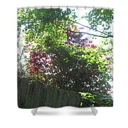 Nature Camera Sees What Eyes Can T  Buy Faa Print Products Or Down Load For Self Printing Navin Josh Shower Curtain
