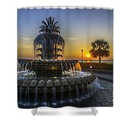 Sun Rays Over Waterfront Park Shower Curtain
