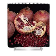 Pomegranates Shower Curtain