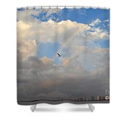 6- Rainbow And Seagull Shower Curtain