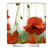 Red Poppy Flowers Shower Curtain