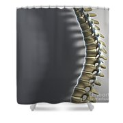 Spinal Anatomy Shower Curtain