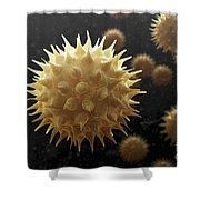 Sunflower Pollen Shower Curtain