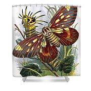 The Butterfly Vivarium Shower Curtain